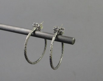 Sterling Silver Hoops Lrg. Ear-231