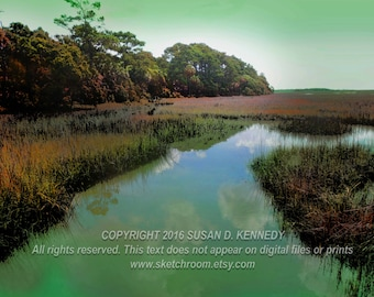 Digitally Painted BOTANY BAY Edisto Island Art Photograph INSTANT Download Digital Printable Art Photograph