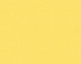 Anna's Garden Criss Cross by Patrick Lose Fabrics - Buttercup 63789-2430715 Quilt Fabric