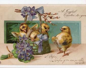 Easter Postcard, vintage postcard, antique postcard,Easter chicks. Basket, flowers. Landscape, Tuck Easter Post Cards Series No. 1228