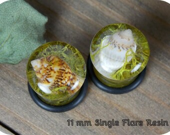 Seashell Moss Plugs Beach Shell Teardrop Natural Flower Plugs Resin Double Flare Single Flare Unique Custom Steel Nature Gauge Gauges Pair
