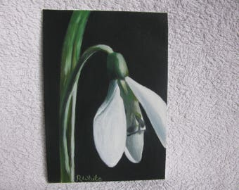 Original oil painting of a Snowdrop.