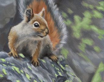 Squirrel - Squirrel painting - squirrel art - squirrel painting -animal art -wildlife art - Open edition print