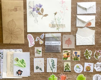 "Botanical envelope ""radish"""