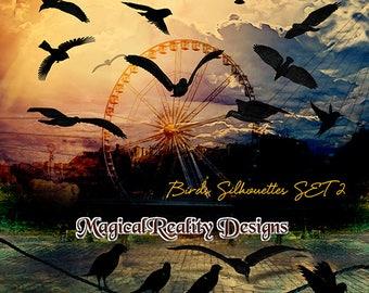 Birds Silhouettes SET 2-{ARTISTIC USE} Digital Scrapbook - Birds - Sunset - Magical Birds Clipart - Photoshop Overlays - Birds Overlays