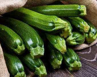 Squash Black Beauty Zucchini 25+ seeds - heirloom seeds - vegetable seeds - garden seeds - squash seeds - summer squash seeds - zucchini