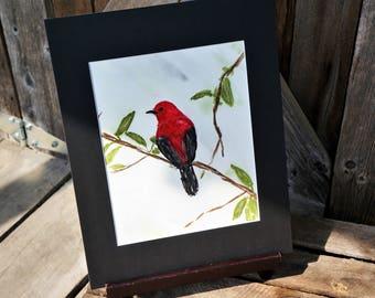 Original hand painted watercolor Cardinal, Matted artwork, Bird, Red bird, Art, Gift, Bird on branch, Red bird on branch, Watercolor