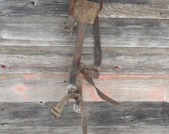 Antique lumberjack Tree Climbing spikes M Klein and Sons