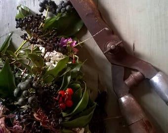 Beautiful Old garden scissors