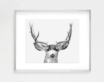 Deer Print, Printable Wall Art, Woodland Animals, Forest Animals, Forest Art, Black And White, Nature Prints, Nursery Print, Nursery Art