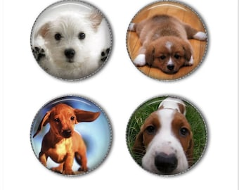 Puppy magnets or puppy pins, buttons, dog magnets, dog pins, funny animal magnets pins, refrigerator magnets, fridge magnets, office magnets