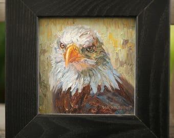 Bald Eagle Study (0riginal oil on canvas)