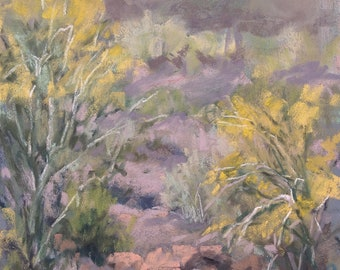 Palo Verde Light 7x5 pastel Tucson AZ