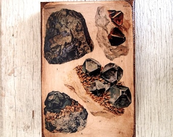 Vintage Rock & Minerals Specimens  -Collection  A  4x6
