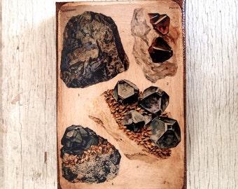 Vintage Rock & Minerals Specimens  -Collection  A  4x6