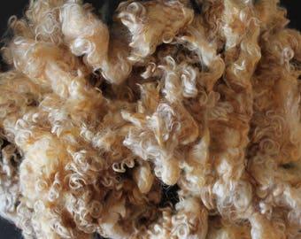 Raw 100 grams Leicester Teeswater cross Unwashed Wool Locks for Wearable Art, Fiber Art, Felting Art