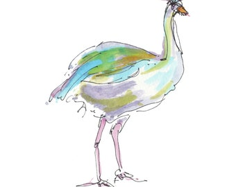 "EMU..Clipart / Digital Download / Hi Resolution of Original Watercolor . 8""x10"" Great for a multitude of applications."