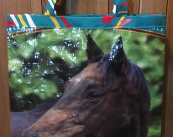 Bay Horse Bag
