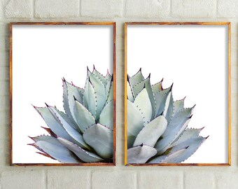 Set Of 2 Prints, Cactus Print,Cactus,Botanical Print,Cactus Art,Cactus Wall Art,Prints Wall Art, Prints,Succulent Print,Wall Decor,Australia