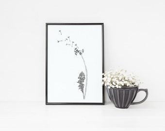 "Dandelion Print | 8"" x 10"" Illustration 