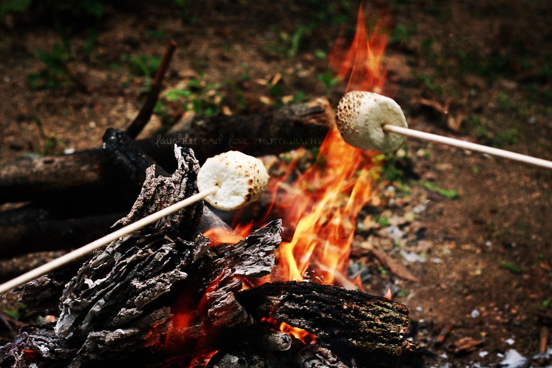 Smores Campfire Fine Art Photography Spring Summer