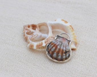 Hawaiian Sunrise Shell Necklace; Sterling Silver Pendant; Seashell ; Ocean Jewelry