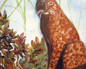 Original wildlife, acrylic painting, North American Bobcat, 16 x 20, stretched canvas, modern art, art for sale