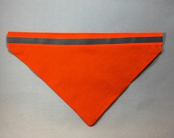 Blaze Orange Dog Bandana Over Collar