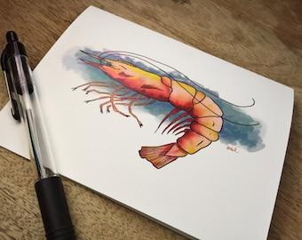 Shrimp Under the Sea notecard multi-pack