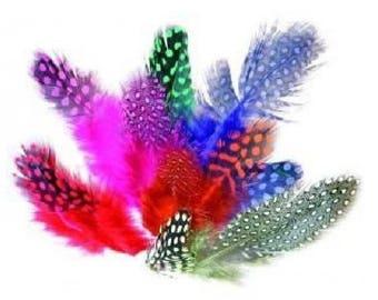 set of 10 assorted Guinea fowl feathers