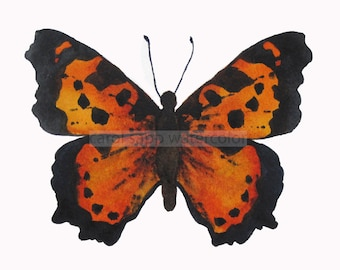"""orange butterfly watercolor butterfly archival print of original 5"""" x 7"""" watercolor painting"""