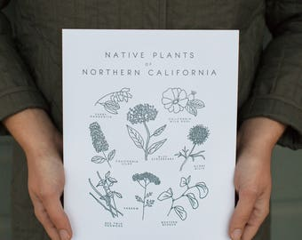 Native Plants of Northern California Letterpress Botanical Art Print 8x10