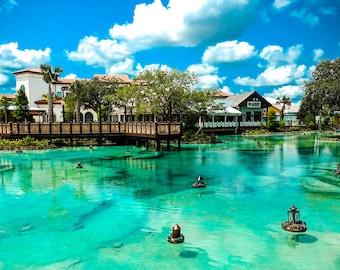 Disney Springs Orlando Florida Fine Art Print - Travel, Scenic, Landscape, Nature, Home Decor, Zen, Water, Blue, Florida