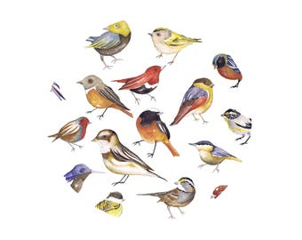 Birds- Fine Art A4 Giclee Print