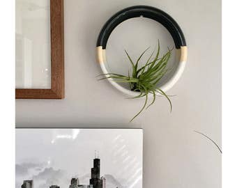 Wall Hanging Air Plant Holder | Large Wall Hanging Planter | Modern Plant Holder | Wall Decor | Hanging Plant Holder | Air Plant Holder
