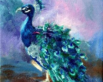 Peacock Original Oil Painting 5x7