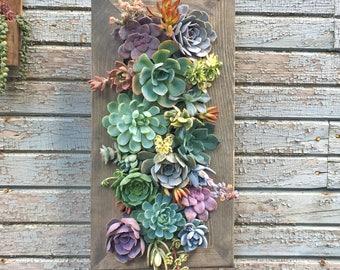 Good Succulent Wall Planter | Etsy