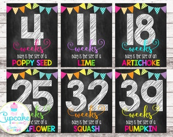 Weekly Pregnancy Chalkboard Signs | Weeks 4-41 | Pregnancy Week by Week | Pregnancy Photo Props | Pregnancy Countdown | Maternity | Digital