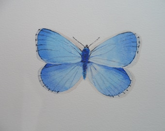 Original Watercolour Adonis Blue Butterfly Painting
