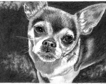Pet Portrait Pet Memorial Custom Pet Portrait Pet Loss Gifts Dog Lover Art