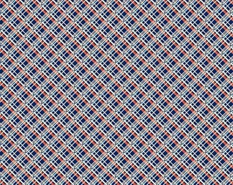 Denyse Schmidt PWDS145 Ludlow Off Plaid Forget Me Not Cotton Fabric By Yd