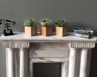 Miniature Succulents, Modern Miniature, Dollhouse Accessory, Set of Three