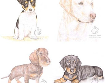 Dog Selection - Pack of 4 Acrylic Coasters