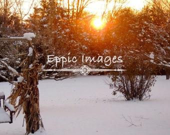 Winter Sunrise Digital Download