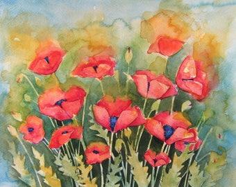 Poppies High Quality A4 Photo Print