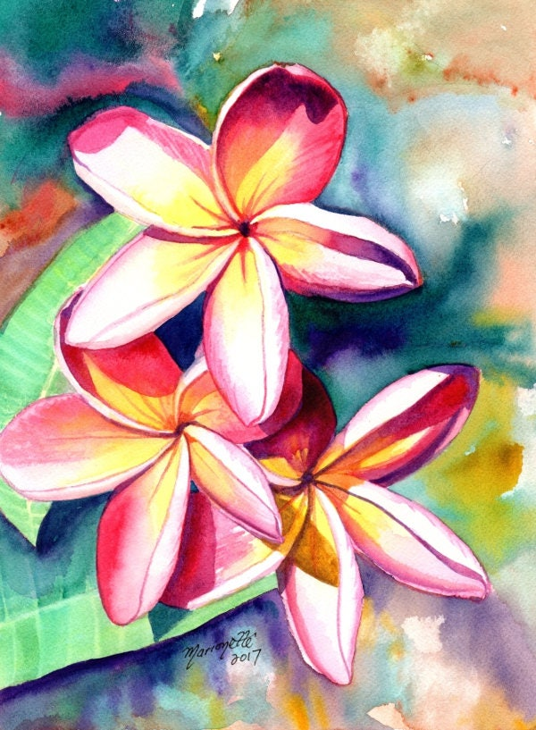 Plumeria Watercolors, Hawaiian Flowers, Tropical Flowers ...