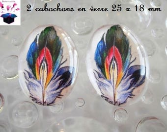 2 cabochons glass 25mm x 18mm theme feather