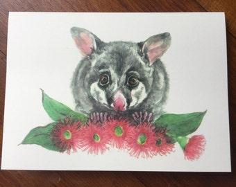 Possum and gumnut blossoms