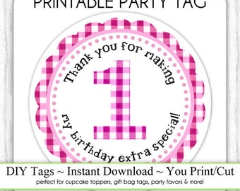 Instant Download - Party Printable Tag, Pink Gingham Party Tag, 1st Birthday Party Tag, DIY Cupcake Topper, You Print, You Cut