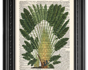 Palm tree with lizard, Dictionary art print, Vintage book art print, upcycled dictionary page, Palm tree print, Gift poster [ART 087]